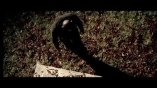 Sinik 'De Tout La Haut' music video