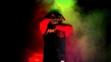 Ab-Soul 'Black Lip Bastard (Black Hippy Remix)' music video
