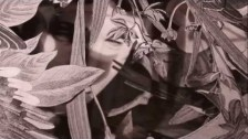 Del Bel 'The Rains' music video