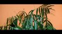 Jessicka 'Wake Up' Music Video