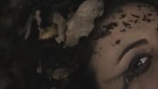 Fer'et Aa Nota 'Ma fiik' music video