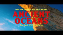 Pip the Pansy 'Ancient Oceans' music video