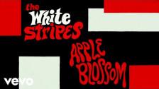 The White Stripes 'Apple Blossom' music video