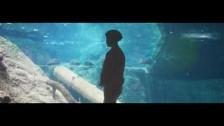 Raveen 'Always' music video