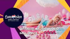 Natalia Gordienko 'Sugar' music video