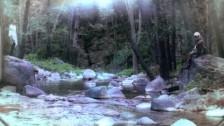 Spirit Animal 'I'm Around' music video