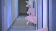 Deerhoof 'Paradise Girls' music video