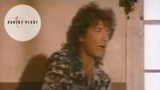 Robert Plant 'Big Log' music video