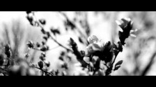 The Joy Formidable 'Silent Treatment' music video