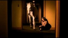 The Corrs 'Give Me A Reason' music video