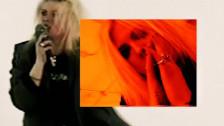 Layne 'Money Money Money' music video
