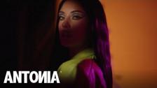 Antonia 'I Think I Love Him' music video