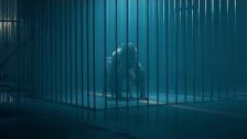 Carla's Dreams 'Formula Apei' music video