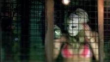 HourCast 'Freak Show' music video