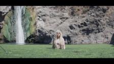 Kiiara 'Bipolar' music video