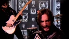 The Family Rain 'Vulpicide' music video