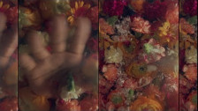 Mormor 'Outside' music video