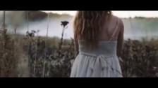 Joe Fessler Band 'Honey Drips' music video