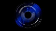 Paul Greenleaf 'Spores' music video