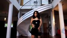 Jadakiss 'Toast To That' music video