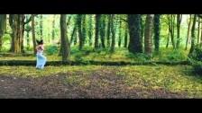 Go Swim 'Animal' music video