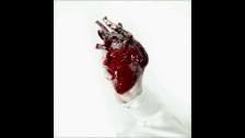 Dr Misio 'DZIEWCZYNY' music video