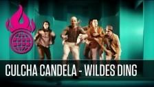 Culcha Candela 'Wildes Ding' music video