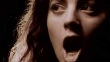 Sarah McLachlan 'The Path Of Thorns' music video