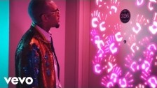 Chris Brown 'Privacy' music video