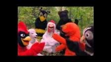 Grandaddy 'Nature Anthem' music video