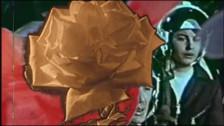 Blue Canopy 'Motovun' music video