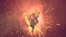SULK 'Flowers' music video