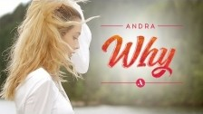 Andra 'Why' music video