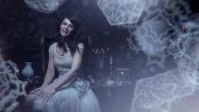 Sue Scrofa 'Roses' music video