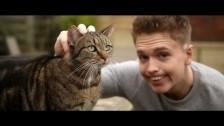 Joe Weller 'Kitty' music video