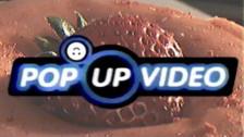 YACHT 'Strawberry Moon' music video