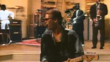 Sting 'If You Love Somebody Set Them Free' music video