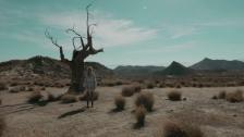 Ekat Bork 'The World is Dancing' music video