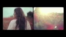 Sweet Gum Tree & Isobel Campbell 'Bird of Passage' music video