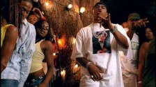 Nelly 'Flap Your Wings' music video