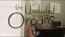 The Uncluded 'Organs' music video
