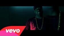 Trae Tha Truth 'Plates Say Texas (DGK)' music video