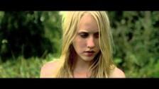 METZ 'Wet Blanket' music video
