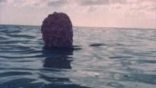 Tungorna 'NOSA' music video