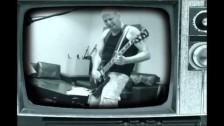 Tal Friedman and The Fat Cats 'Hatikva' music video