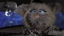 Avey Tare's Slasher Flicks 'Little Fang' music video