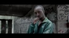 Jungle 'The Heat' music video