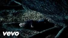 Florent Pagny 'Et Un Jour Une Femme' music video