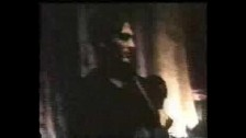 The Wallflowers 'Ashes to Ashes' music video