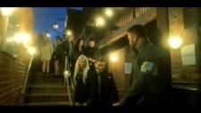 Rat Attack 'A Bird In Hand' music video
